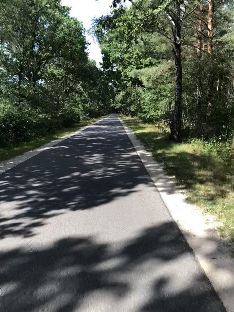 1a Radwege durch den Wald