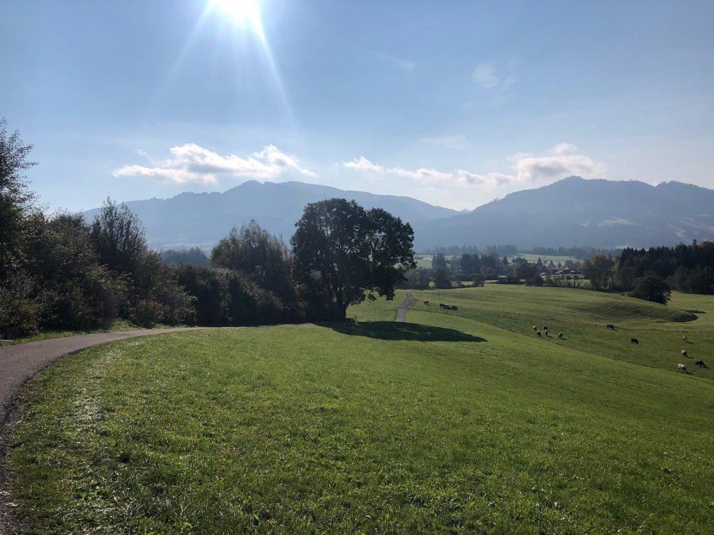 Grandioser Blick auf die Alpen