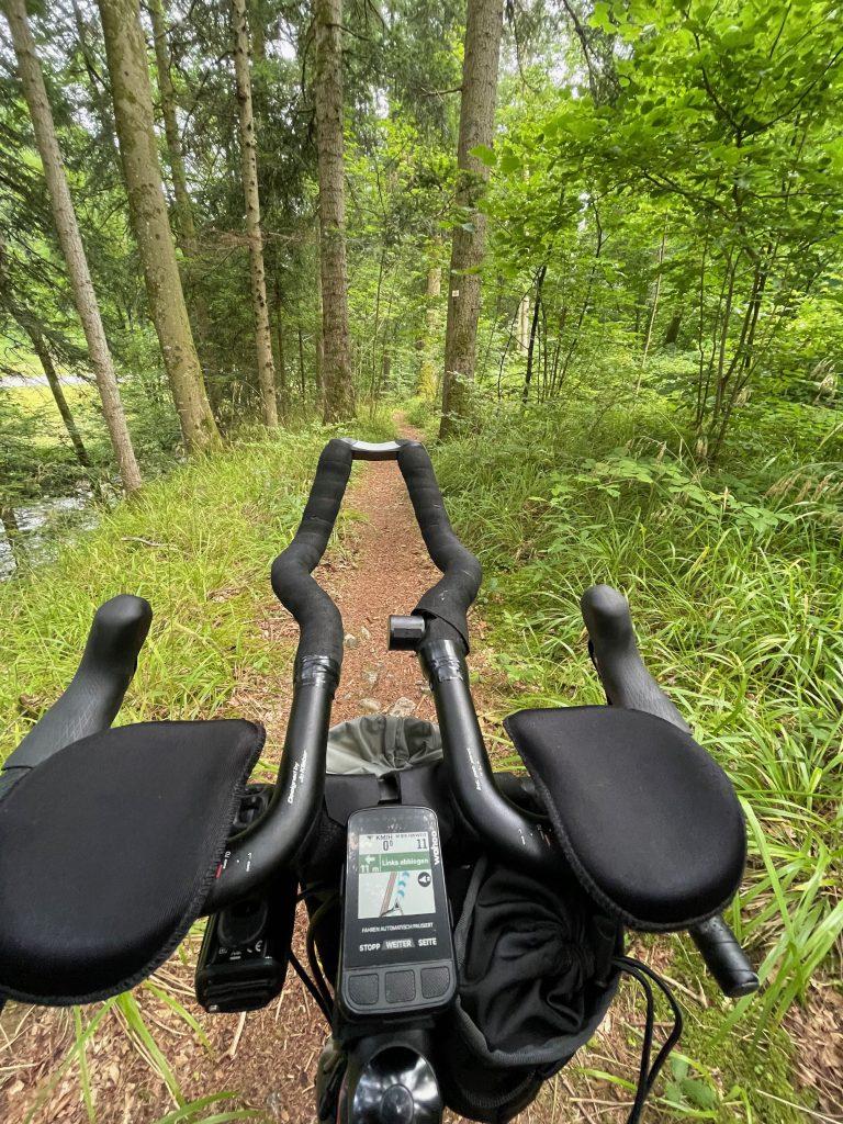 Endlich im Wald
