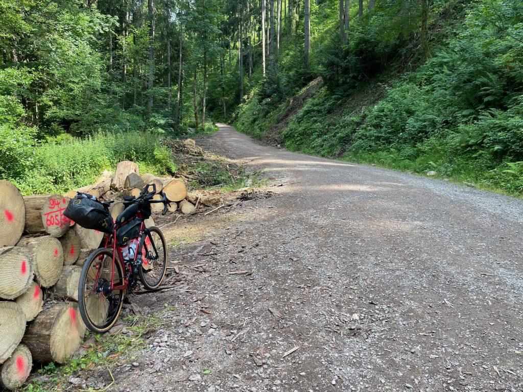 Forststraßen durch den Wald