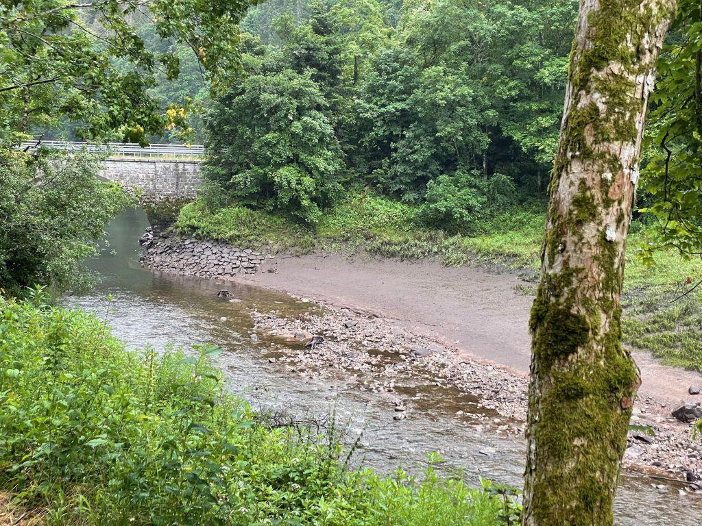 Schöne Flüsse im Wald